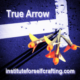 True Arrow : a short course in creating a life that sets you free